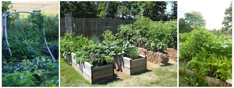gardens-combo.jpg
