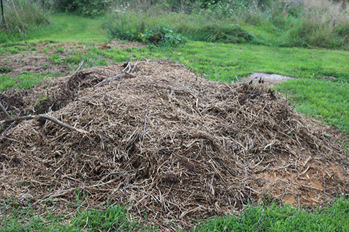 compost-pile-small.jpg