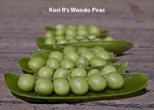 from-kari-r.-wando-peas.jpg